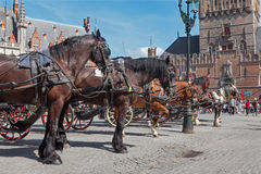 Bruges - The Carriage on the Grote Markt and Belfort van Brugge in background. Royalty Free Stock Images