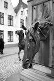 bruges fontanny koń Obraz Royalty Free