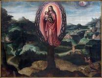 Bruges - a pintura O de Madonna da aparição L Crescimento de Vrouw camionete de Droge por P Claeissens (1620) na igreja de Walbur Fotos de Stock