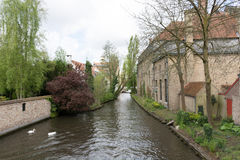 Bruges in un pomeriggio della molla fotografie stock libere da diritti