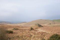 Brughiera di rotolamento nel Nord della Gran-Bretagna, di grande roccia dentellata e della felce aquilina asciutta immagine stock