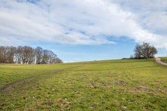 Brughiera in un parco sotto il cielo blu in pieno delle nuvole Fotografia Stock
