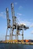 Brugkranen bij een containerhaven Stock Foto's