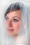 Bruid royalty-vrije stock foto's