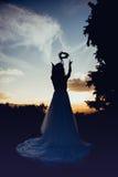 Bruid bij zonsondergang, in aard Royalty-vrije Stock Foto's