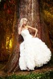 Bruid die in het park loopt Royalty-vrije Stock Afbeeldingen