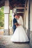 Bruid en bruidegom bij huwelijksdag stock afbeeldingen