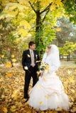 Bruid en bruidegom in de herfst Royalty-vrije Stock Fotografie