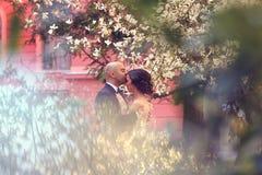 Bruid en bruidegom in de lente Royalty-vrije Stock Foto's