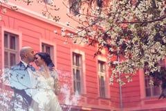 Bruid en bruidegom in de lente Royalty-vrije Stock Afbeeldingen