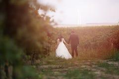 Bruid en bruidegom in de wijnstokken Stock Foto's