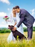 Bruid en bruidegom de zomer openlucht Stock Afbeeldingen