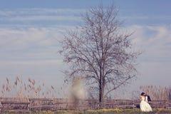 Bruid en bruidegom dichtbij grote boom Stock Afbeeldingen