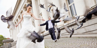 Bruid en bruidegom die achter duiven lopen Royalty-vrije Stock Afbeeldingen