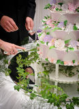 Bruid en bruidegom die de cake snijden Stock Fotografie