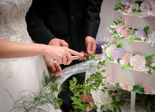 Bruid en bruidegom die de cake snijden Royalty-vrije Stock Fotografie