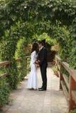 Bruid en bruidegom die in de groene aard wordt gekust Royalty-vrije Stock Fotografie