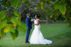 Bruid en bruidegom die elkaar onder ogen zien en handen houden royalty-vrije stock fotografie