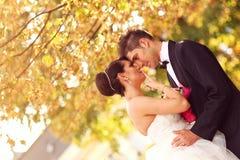 Bruid en bruidegom die en in de stad kussen omhelzen Stock Fotografie