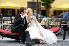 Bruid en bruidegom die op een tak aanwezig zijn Stock Afbeeldingen
