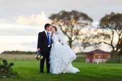 Bruid en bruidegom die op het gebied lopen Royalty-vrije Stock Fotografie
