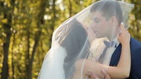 Bruid en bruidegom die in park, het kussen lopen stock video