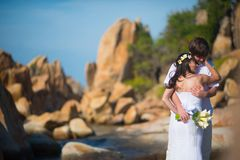 Bruid en bruidegom die zacht tegen het mooie landschap, de bergen en het overzees koesteren royalty-vrije stock foto's