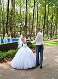 Bruid en bruidegom in een park Royalty-vrije Stock Fotografie