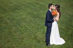 Bruid en bruidegom het kussen op groen gras Stock Foto