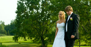 Bruid en bruidegom in land Stock Foto's