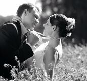Bruid en Bruidegom in Liefde Stock Foto's