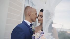 Bruid en bruidegom onder een huwelijkssluier Het houdende van paar heeft teder een tijd samen Man en vrouwenkus in huwelijksdag stock video