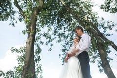 Bruid en bruidegom op de boom stock fotografie