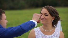 Bruid en bruidegom op een groene weide in de zomerdag stock footage