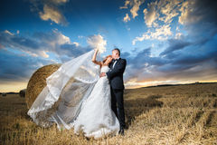 Bruid en bruidegom op het gebied Stock Foto's