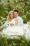 Bruid en bruidegom op het gras Royalty-vrije Stock Afbeeldingen