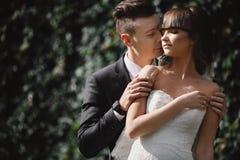 Bruid en bruidegom in park het kussen de bruid en de bruidegom van paarjonggehuwden bij een huwelijk in aard kussen fotoportret royalty-vrije stock foto's