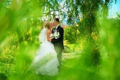 Bruid en bruidegom van groen park Royalty-vrije Stock Foto