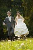 Bruid en bruidegom in weide Royalty-vrije Stock Afbeelding