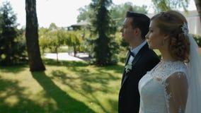 Bruid en bruidegomgang in het park stock video