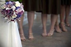 Bruid en bruidsmeisjes royalty-vrije stock foto