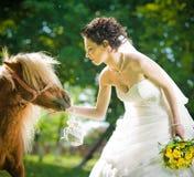 Bruid en poneys in park Stock Fotografie