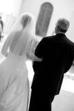 Bruid en vader stock afbeeldingen