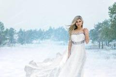 Bruid in het de winterbos Royalty-vrije Stock Afbeeldingen