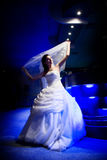 Bruid in het licht van nacht Stock Afbeeldingen