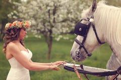 Bruid het spelen met witte paarden Royalty-vrije Stock Afbeelding