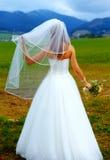 Bruid in kleding met sluier van achter haar onder ogen ziend het berglandschap met huwelijksboeket in haar hand royalty-vrije stock foto's