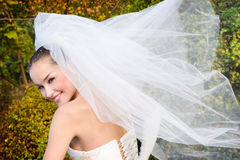 Bruid met vliegsluier Stock Afbeeldingen