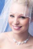 Bruid onder een sluier Stock Fotografie