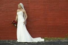Bruid op rode bakstenen muur Royalty-vrije Stock Foto
